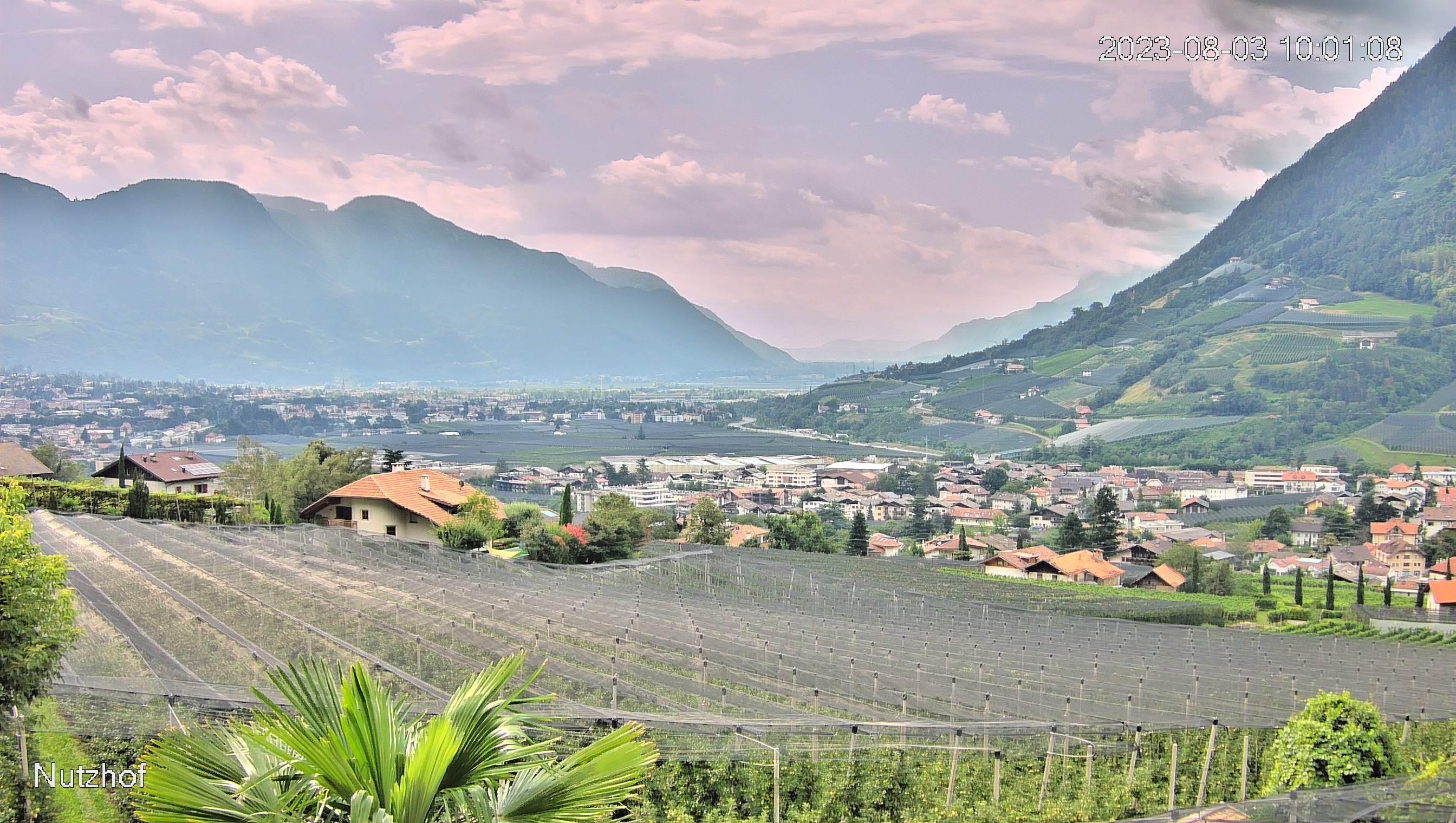 Webcam Nutzhof